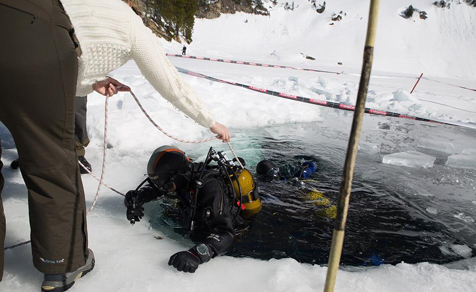 Plongée sous glace suisse deep turtle